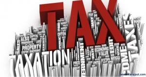 www.carajput.com; Income Tax,2013