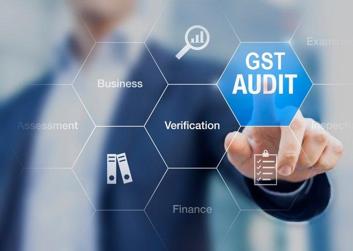 www.carajput.com; GST Audit