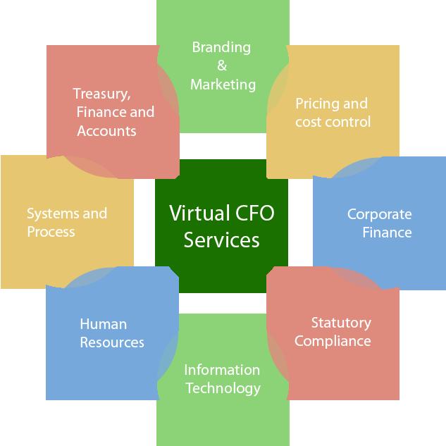 www.carajput.com; VIRTUAL CFO