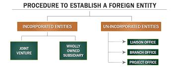 www.carajput.com;procedure to establish a foreign entity