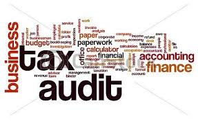 www.carajput.com; Tax Audit