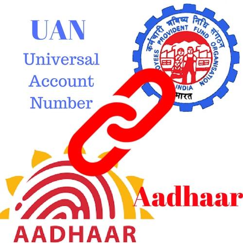 www.carajput.com; UAN & Aadhar